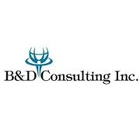 BD_Consulting